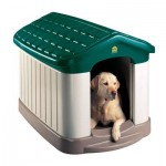 Insulated Dog Houses Can Protect your Pets