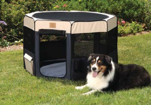 Soft Side Dog Play Yard